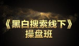 芒果电商《黑白搜索流量暴增》线下实操班25期-济南站