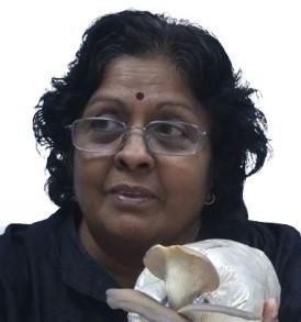 The 10th International Medicinal Mushroom Conference