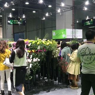 2020亚洲花卉产业博览会(Flower Expo Asia 2020)